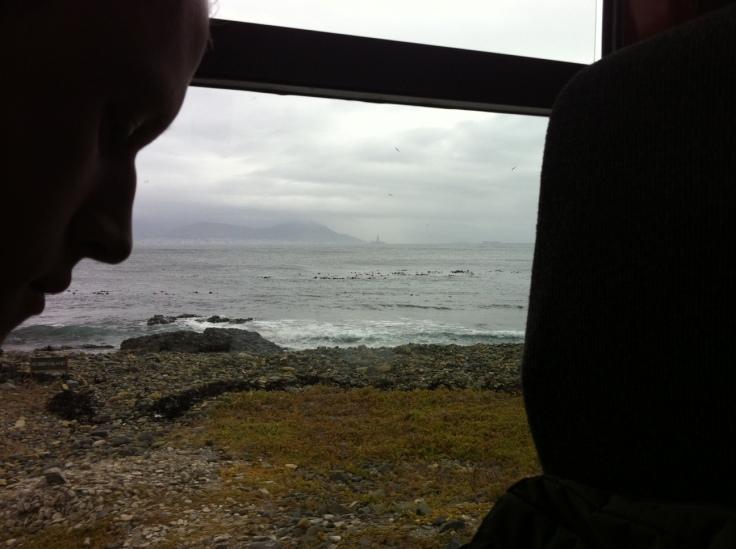 Tour de bus pela ilha Robben