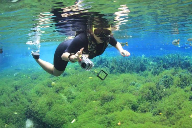 aquário natural - bonito, ms
